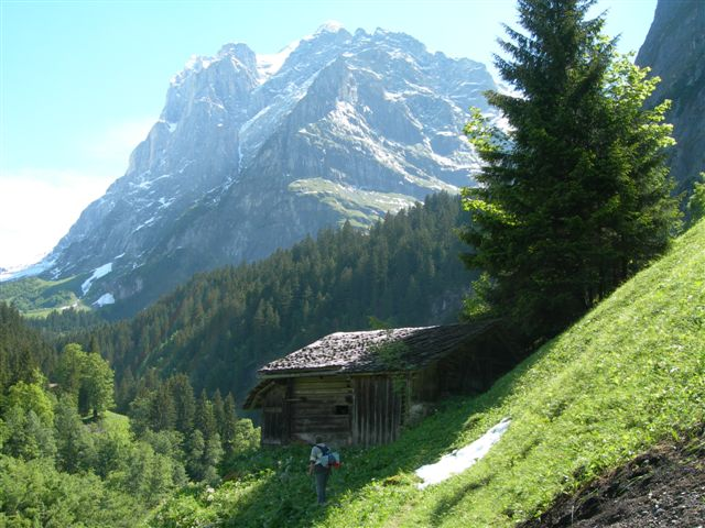 wetterhorn-on-a-local-walk.JPG